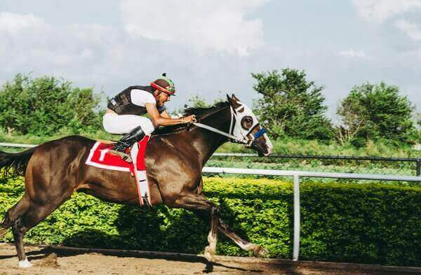 Horse Racing Betting Tips - Featured Image