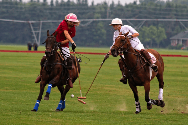 10 Interesting and Unusual Polo Facts - image